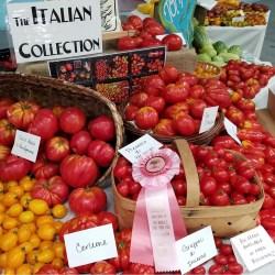 Specialty Italian tomatoes