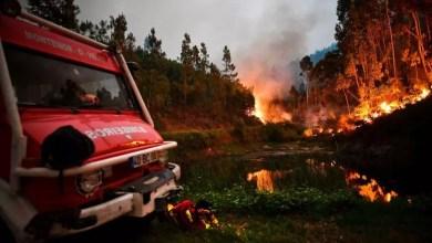 incendie, portugal