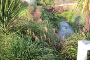 Portobello Creek Planting
