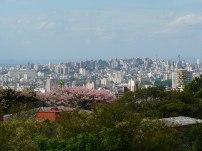 porto-alegre-vista-do-alto (121)