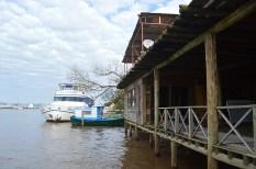 ilha-da-pintada (70)