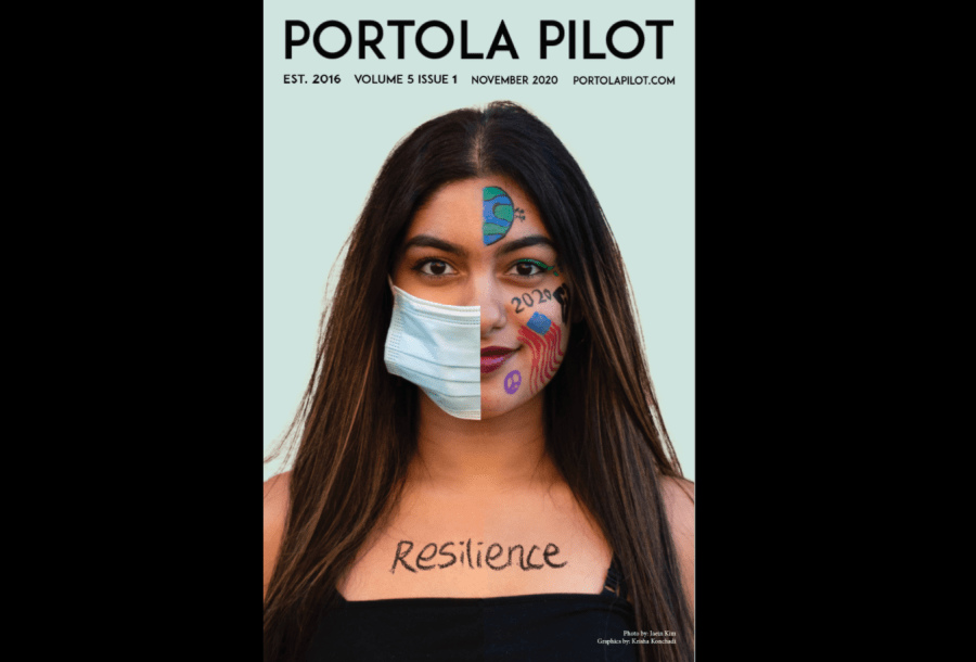 Resilience: Volume 5 Issue 1