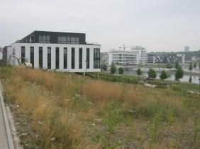 Hafenquartier im September 2013   Bildrechte: nickneuwald