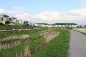 Emscherauen am Dortmunder PHOENIX See   Bildrechte: nickneuwald