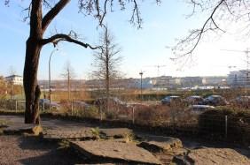 Schulhof der Weingarten-Grundschule | Bildrechte: nickneuwald