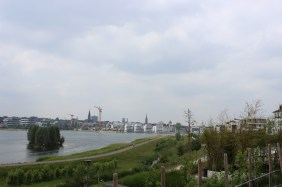 Weinberg am PHOENIX See mit Port PHOENIX im Hintergrund | Bildrechte: nickneuwald