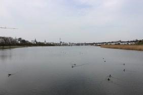 Südufer im April 2016   Bildrechte: nickneuwald