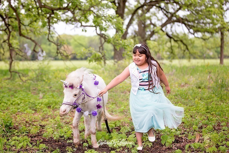 St Charles Illinois Unicorn Photos
