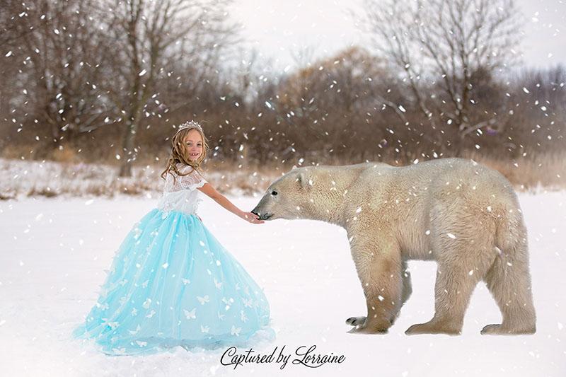 Fairytale-photos-illinois-2-2