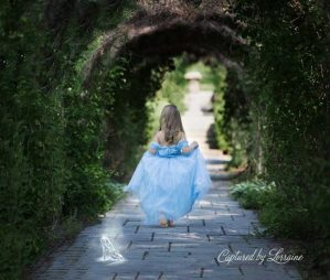 Fairytale-photoshoot-illinois