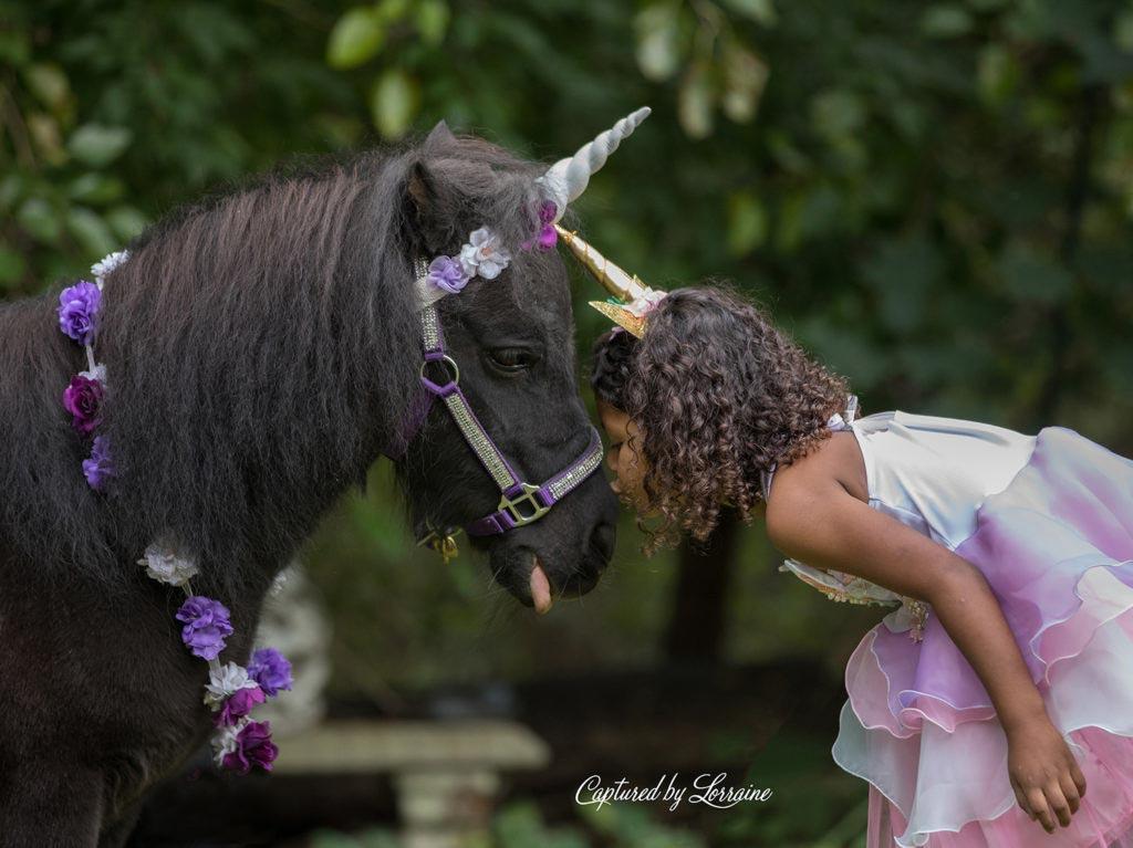Unicorn-Photo-Session-Elgin-Illinois-