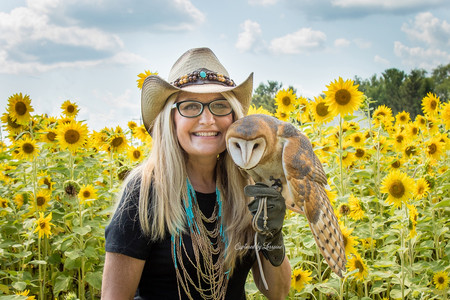 Birds of Prey and Sunflowers