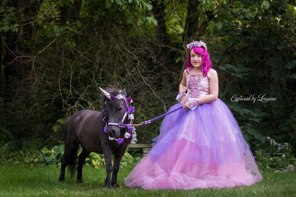 Unicorn Photo shoot St Charles Illinois
