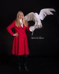 Snowy Owl Portrait Photographer