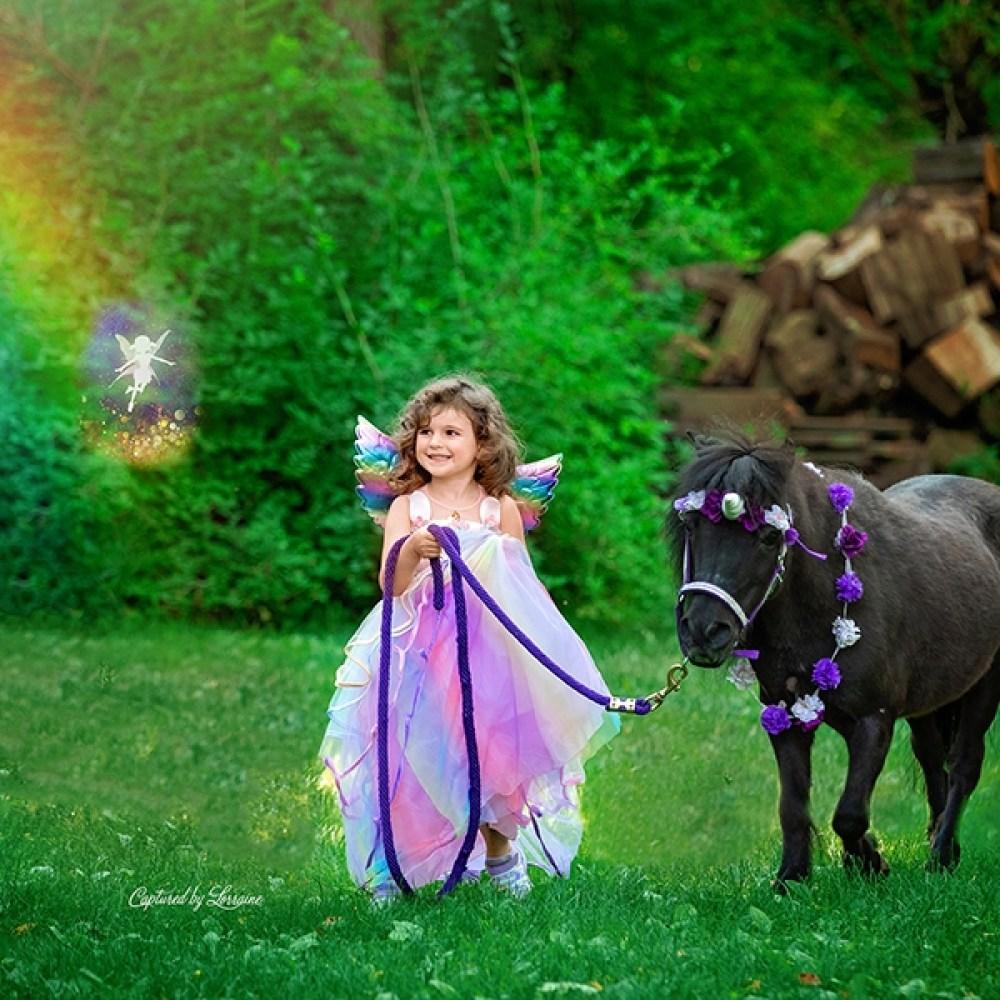 Illinois Unicorn Photography