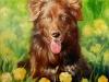 oil Portrait, hund Sommer Bildnis