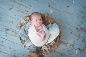 newborn baby awake in nest blue floor