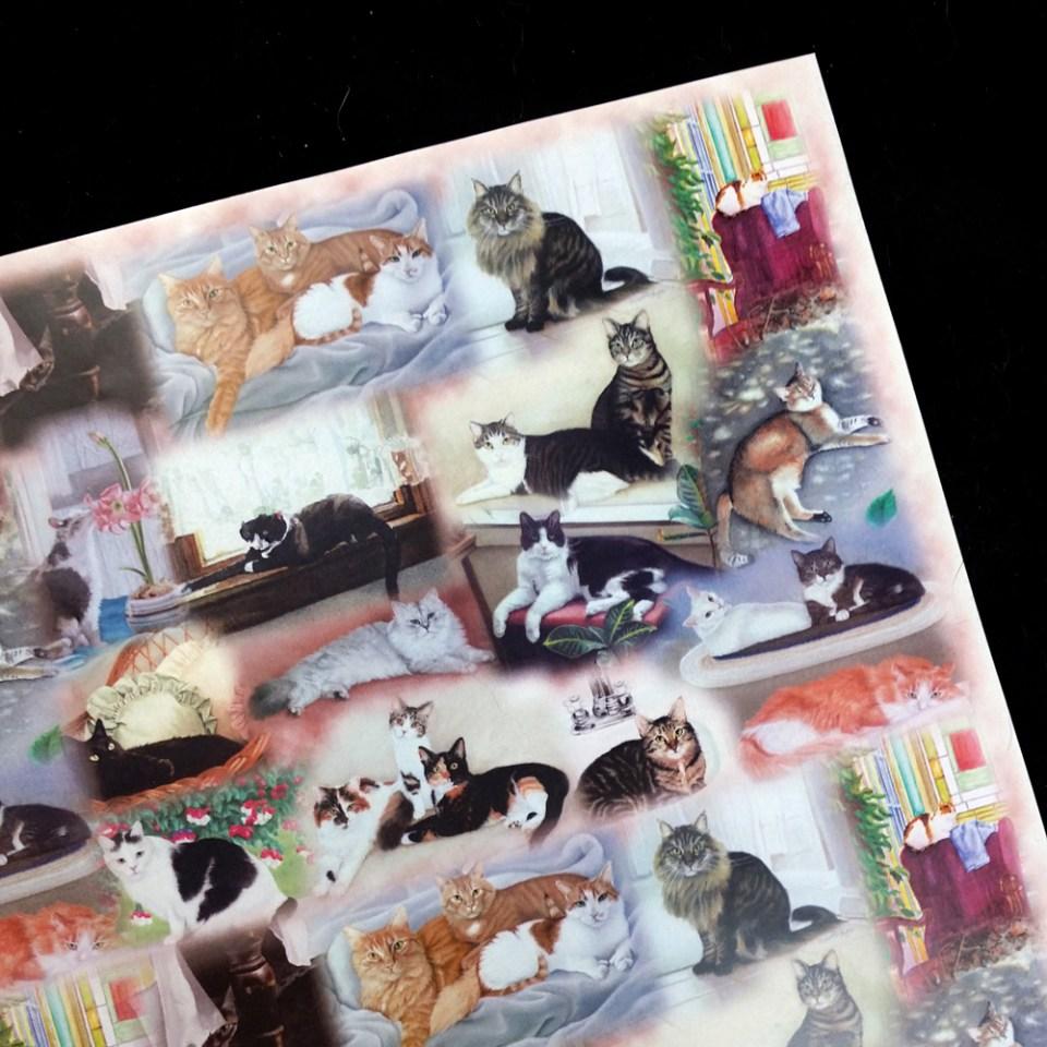 """""""22 Cats"""" art paper"""