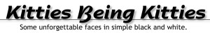 KittiesBeingKitties-logo-black