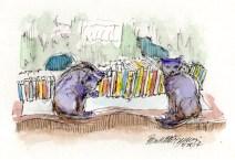 022814-CatBookLibrary