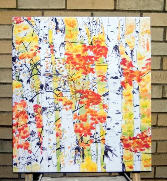 16 x 20 canvas