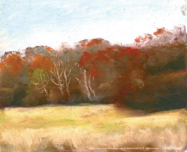 Soft November Afternoon, pastel on self-prepared bosrd, 10 x 8, 2006 © Bernadette E. Kazmarski