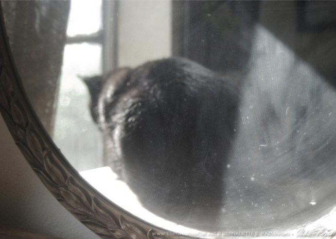 Mimi in the Mirror