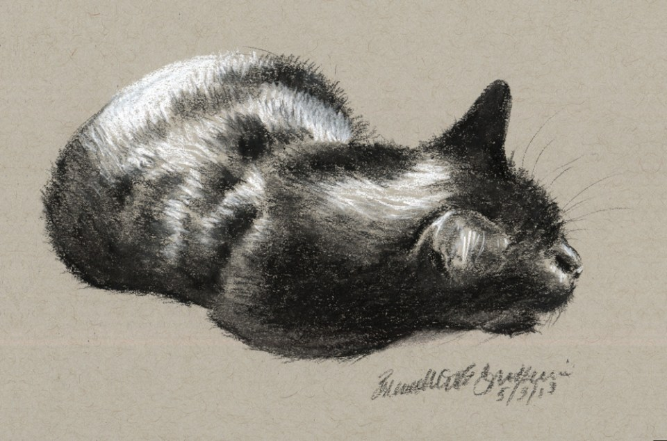"""A Vigilant Nap"", black and white charcoal pencils on gray toned paper, 4.5"" x 7"" © Bernadette E. Kazmarski"