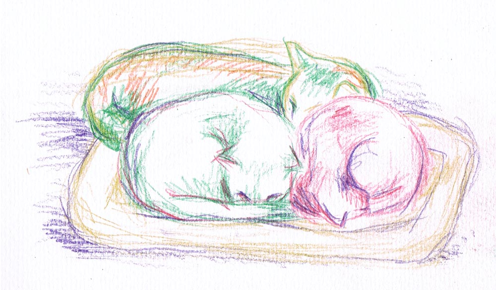 watercolor pencil without washes; 022512-3Cuddled-pencilonly