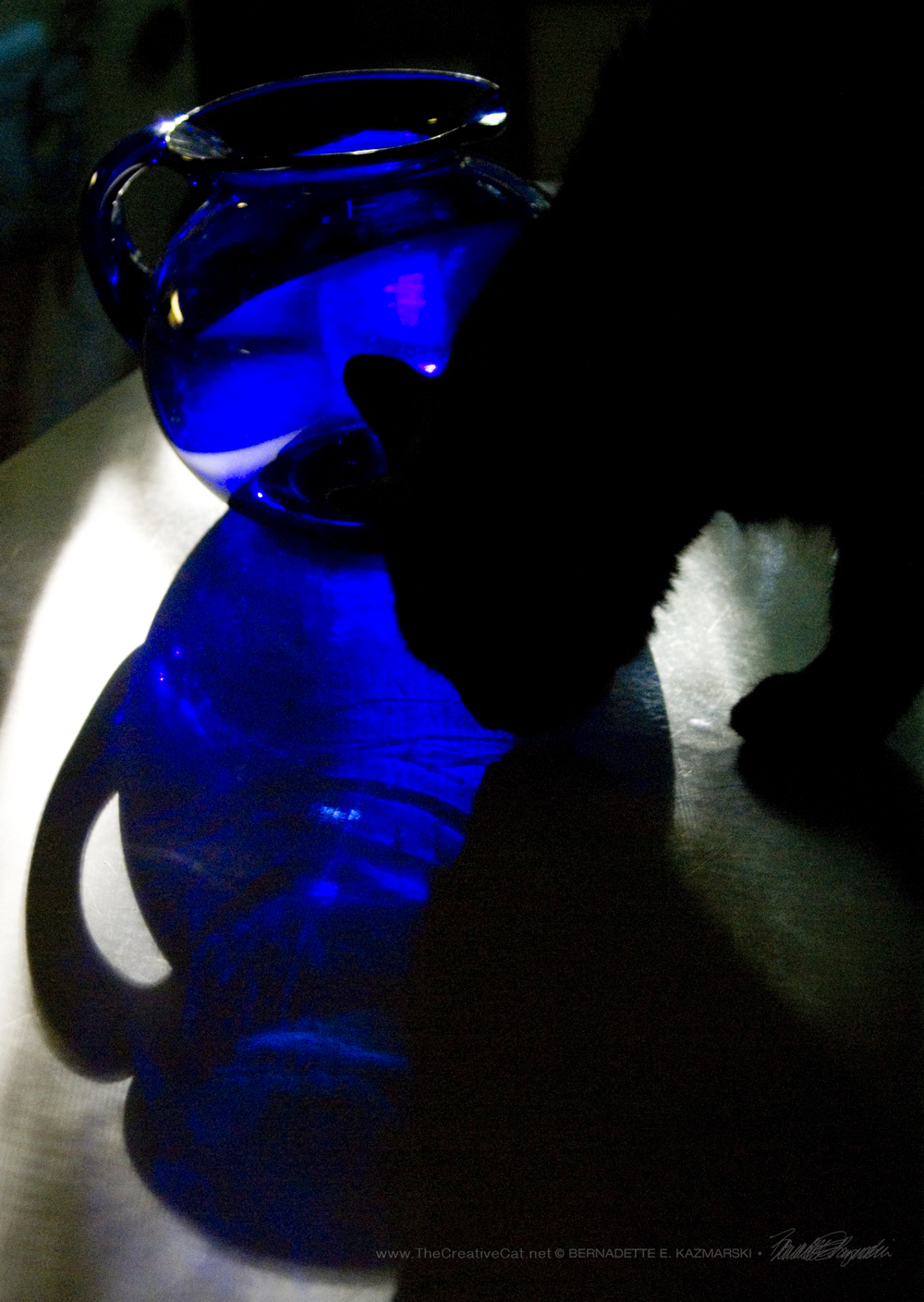 Blue Pitcher With Black Cat