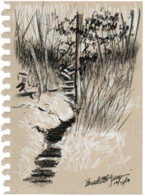 "Ravine, 5"" x 7"", white and black charcoal © Bernadette E. Kazmarski"