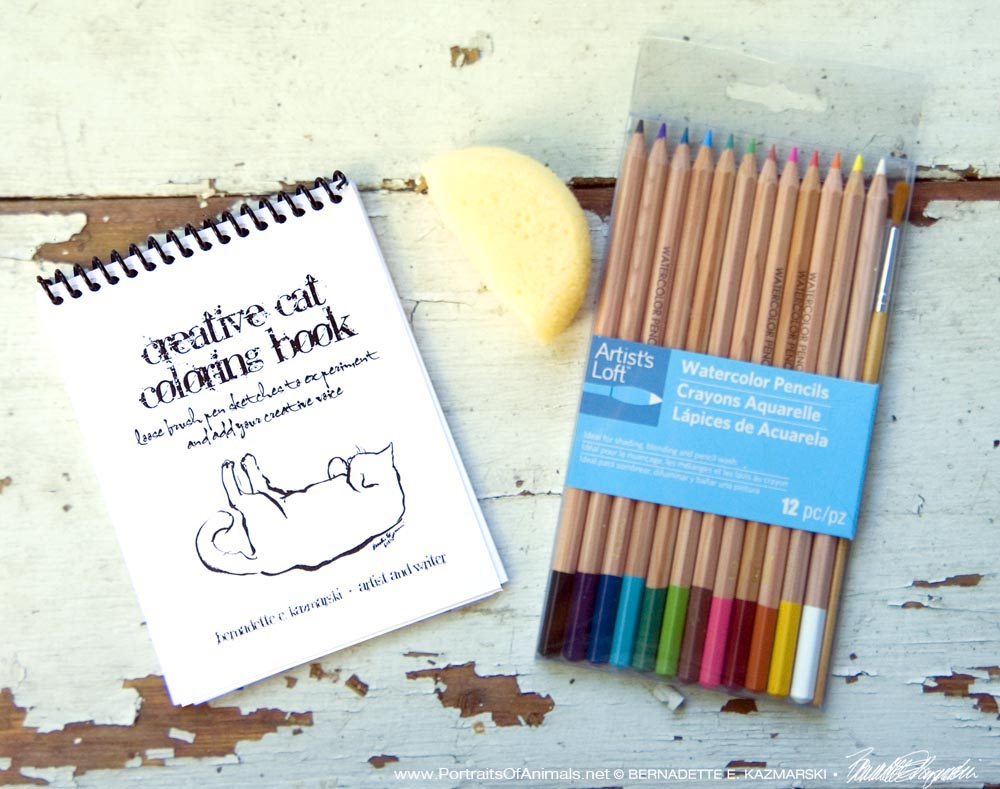 Creative Cat Coloring Book With Watercolor Pencils And Art Sponge