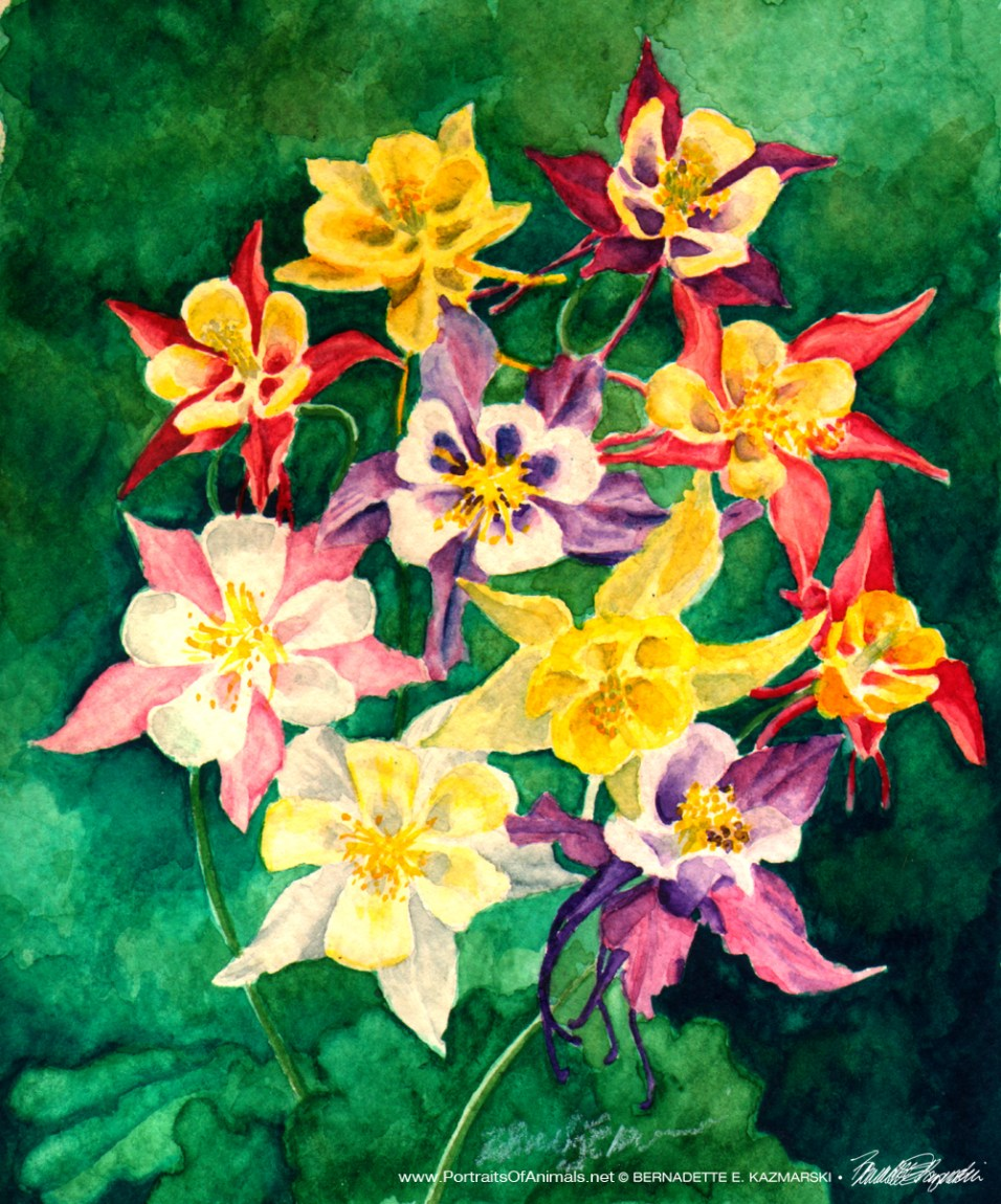 Columbines, Watercolor, 5 x 7, 1994 © Bernadete E. Kazmarski