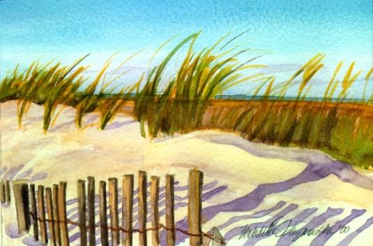 Evening on the Beach
