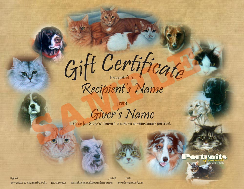 Purchase a Commissioned Portrait Gift Certificate