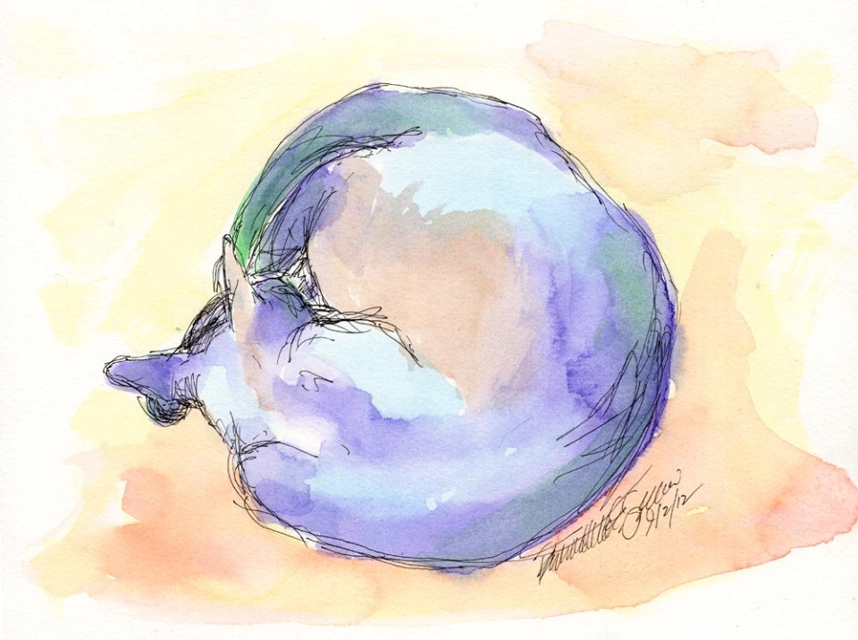"""World Cat"", ink and watercolor, 9"" x 12"" © Bernadette E. Kazmarski"
