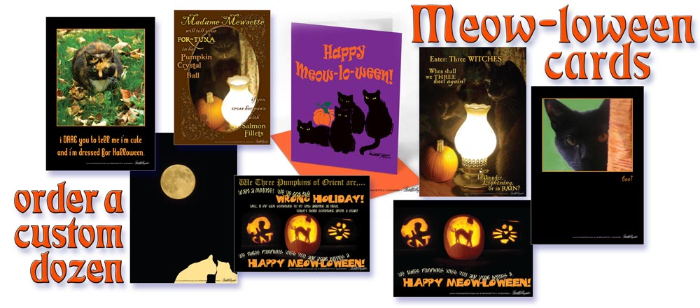 Feline Seasonal and Holiday Greeting Cards