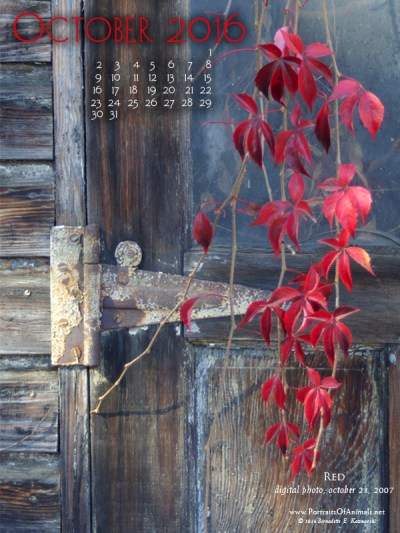 """Red"" desktop calendar, 600 x 800 for iPad, Kindle and other readers."