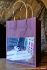 Warm Winter Sun Fine Art Gift Bag