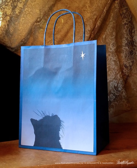 Star of Wonder Gift Bag