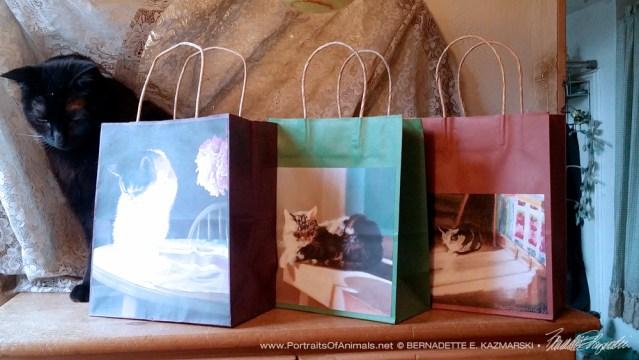 Fine Art Gift Bags