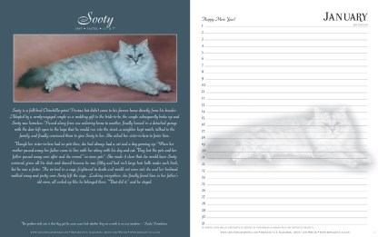 Great Rescues Day Book, sample two-page spread.