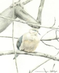 Biding Time, detail of dove.