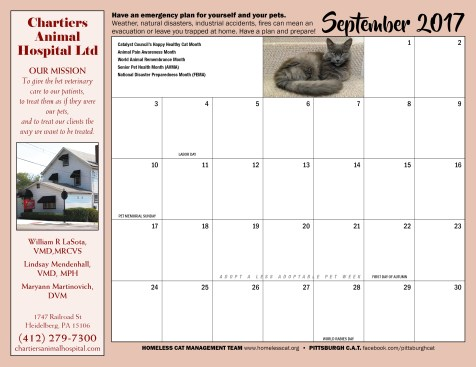September calendar and sponsor ad.