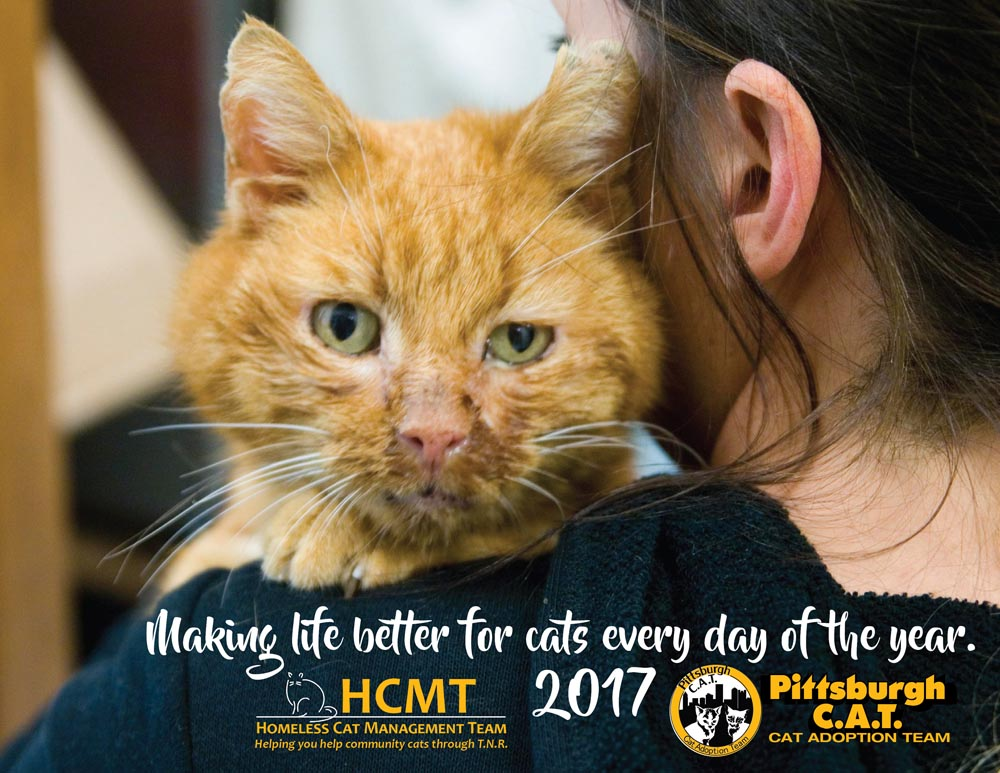 Help Us Help Cats With the 2017 HCMT/Pittsburgh C.A.T. Calendar
