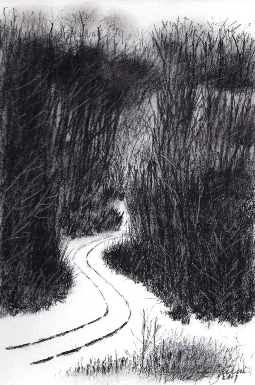 Curving Tracks, Charcoal, 6.25 x 9.5 © Bernadette E. Kazmarski