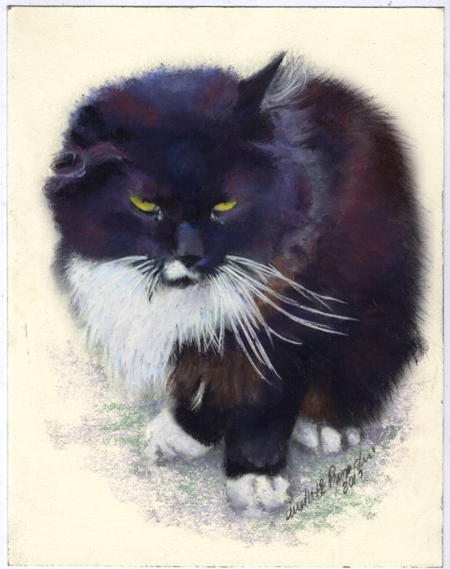 """""""Henry"""", pastel on smooth cream cotton board, uncropped."""