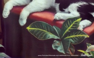 Detail of portrait, paws and plant