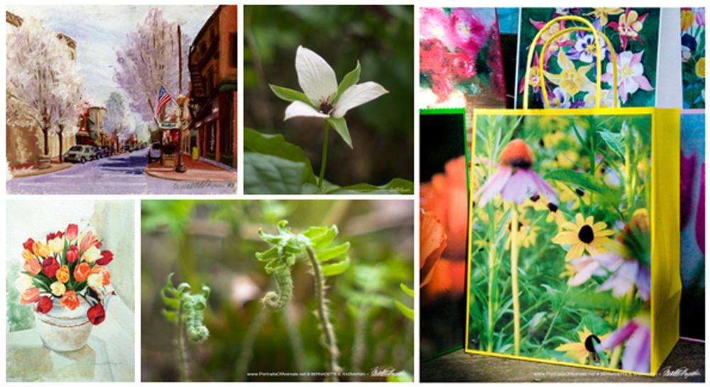 Spring 2017 Nature and Wildlife Sampler Box