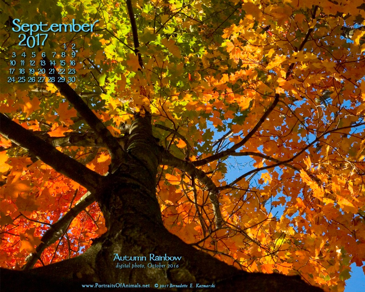 September Nature Desktop Calendar: Autumn Rainbow